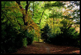 Leinwandbild, aus Wald und Flur, Motiv: 0392, in einem Rahmen mit Schattenfuge