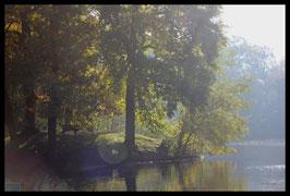 Leinwandbild, aus Wald und Flur, Motiv: 0175, in einem Rahmen mit Schattenfuge