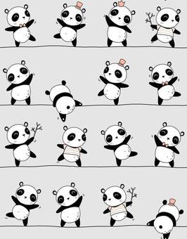 PANDA EQUILIBRISTE