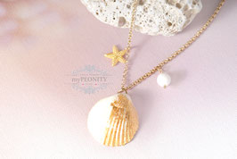 Echte Muschel - blattvergoldet, Seestern, Halskette
