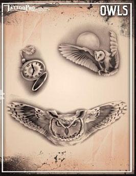 Stencil Owl