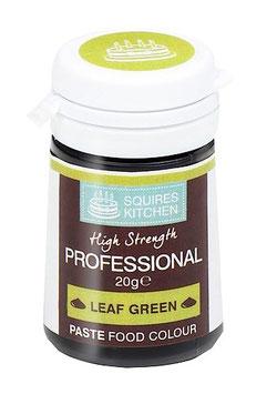 Colorant alimentaire pâte Leaf Green (vert feuille)