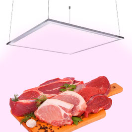 Pannello LED Rosa per Banco Carni a Sospensione 48W per Macelleria 60x60cm