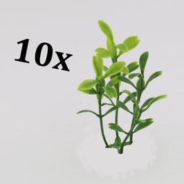 Exotic plants (variant 2) / Exotische Pflanzen (Variante 2)