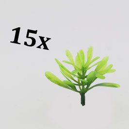 Exotic plants (variant 3) / Exotische Pflanzen (Variante 3)