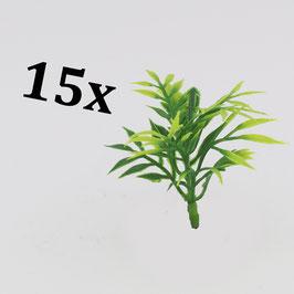 Exotic plants (variant 1) / Exotische Pflanzen (Variante 1)