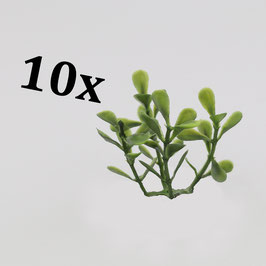 Exotic plants (variant 4) / Exotische Pflanzen (Variante 4)