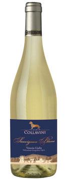 Egenio Collavini,  Sauvignon Blanc IGT 2018* -  6 er Pack