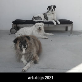 art+dogs 2021   Tischkalender QUADRAT