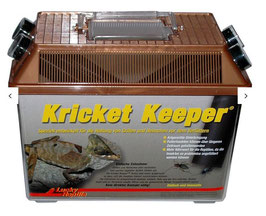 Lucky Reptile Kricket Keeper
