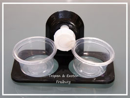 Geckofeeder double - Gecko food dish and water holder