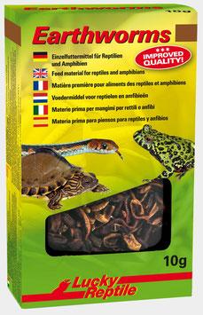 Lucky Reptile Earthworms - getrocknete Regenwürmer 10gr