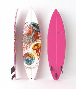 DISCO MEDUSE  1  Surfboard