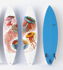 DISCO MEDUSE Diptych / 2  Surfboards