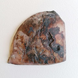 Fossile Herbes Sauvages