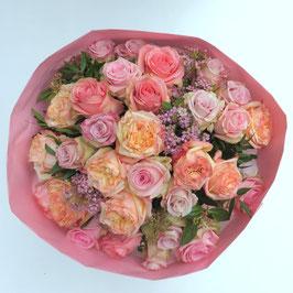 Rosa Premiumrosen