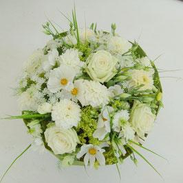 Weiße Sommerblumen