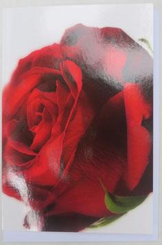Grußkarte - Rote Rose