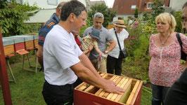 Führung am Bienenstand und Honigverkostung