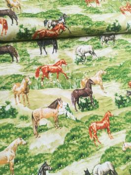 Baumwolle beige/grün mit Pferde, Grundpreis: 10,90€/m