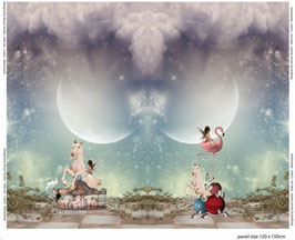 Jersey Panel Einhorn Karussell von Stenzo, Grundpreis: 15,75€/m