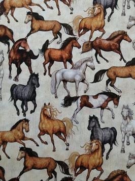 Baumwolle creme mit wilden Pferden, Grundpreis: 11,90€/m