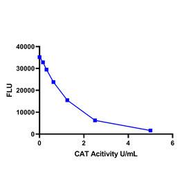 Catalase (CAT) Activity Assay Kit (Fluorometric)