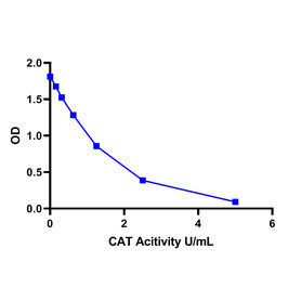 Catalase (CAT) Activity Assay Kit (Colorimetric)