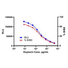 Oxytocin CLIA Assay