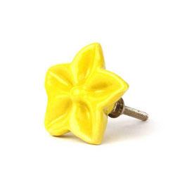 Sternblume B14, gelb