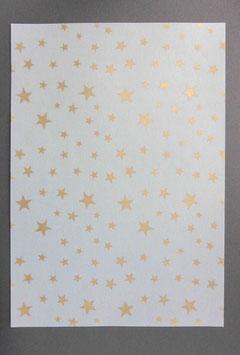 Bedrucktes Transparentpapier T15