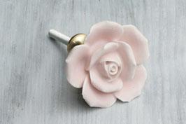 Möbelknopf Rose hellrosa, matt 61870