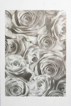 Bedrucktes Transparentpapier Rosen T9