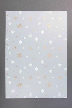Bedrucktes Transparentpapier T14