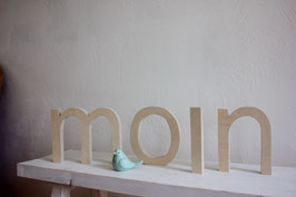 Schriftzug Moin  (verschiedene Farben)