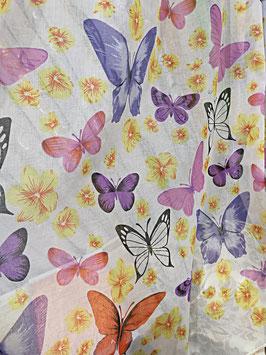 Бабочки (красивые).