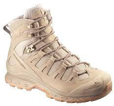 Salomon Forces GTX Tan