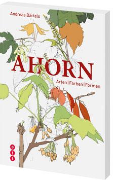 Ahorn - Arten / Farben / Formen
