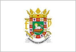 Bandera de La Fortaleza