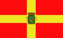 Bandera de Puerto Rico Español (1873)