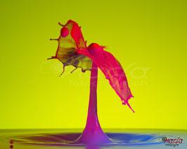 Highspeed Wassertropfen Acryl-Glas