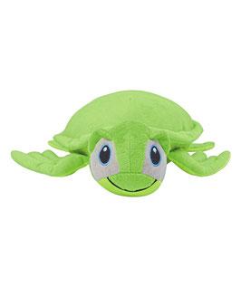 Zippies Schildkröte