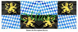 1:24 / 7cm Fahne für Landsknechte #14