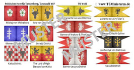 1:72 Mittelalter Polnische Banner #07