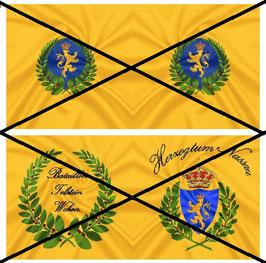 1:32 Flag Napoleon Nassau Infanterie #01