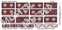1:72 Napoleonische Feldzüge #18 Polen
