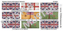 1:72 Napoleonische Feldzüge #33 England Battle of Waterloo