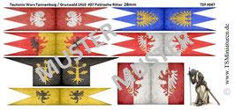 28mm Teutonia / Tannenberg #07 Polnische Ritter