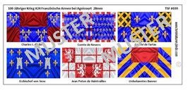 28mm Die Schlacht von Agnicourt #04 Frankreich