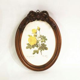 ルドゥーテ バラ額絵 リボン額縁 木製額 バラ イエロー 黄色 楕円 薔薇 イタリア製 デコールトスカーナ ITALY DekorToscana 937003